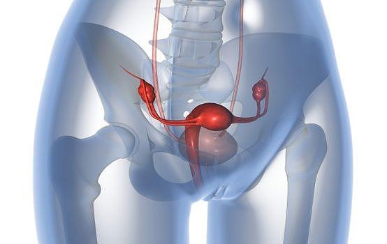 onderzoek en behandeling van de voorplantingsorganen bij moeilijk zwanger worden